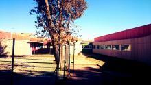 Colegio de Infantil y Primer Ciclo